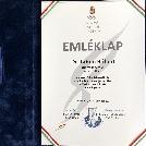 Dr. Tahon Róbert a Magyar Olimpiai Akadémia elismerésében részesült