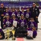 III. Skoda Schiller Purple Cup