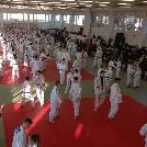Négy éremmel indították az évet judosaink