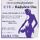 Röplabdásaink vasárnap fognak hazai pályán a Budaörsi Dse ellen játszani